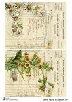 Декупажные карты Herbal 8   30 гр/м2